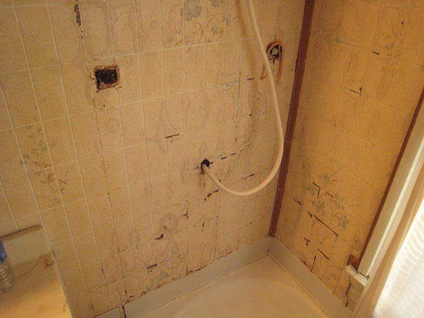 The Old Shower