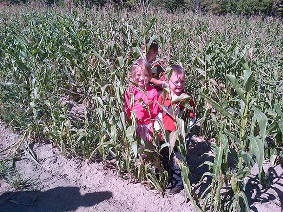 The Kids in the Corn