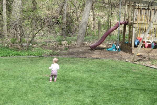 Lucia Exploring The Backyard